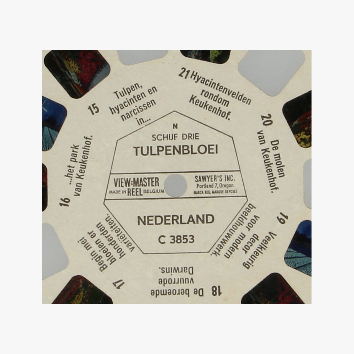 Afbeeldingen van View-Master Nederland Tulpenbloei nr. C 3853 schijf 3