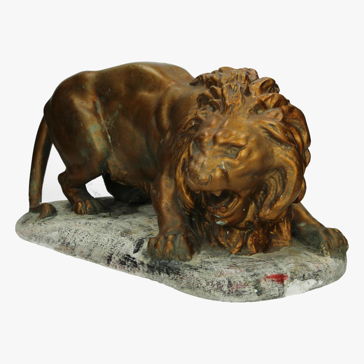 Afbeeldingen van leeuw op rots mat gips