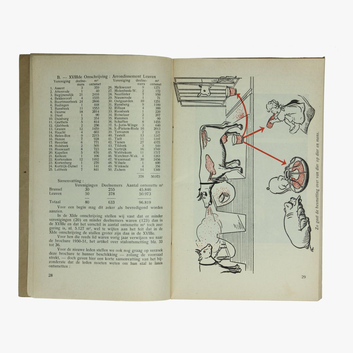 Afbeeldingen van Rundertuberculosebestrijding 1951-1952 Provincie Brabant. Boek