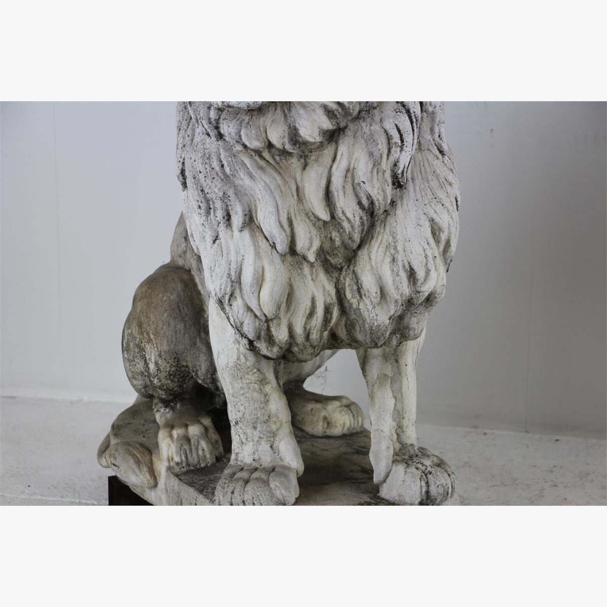 Afbeeldingen van  stel stenen leeuwen