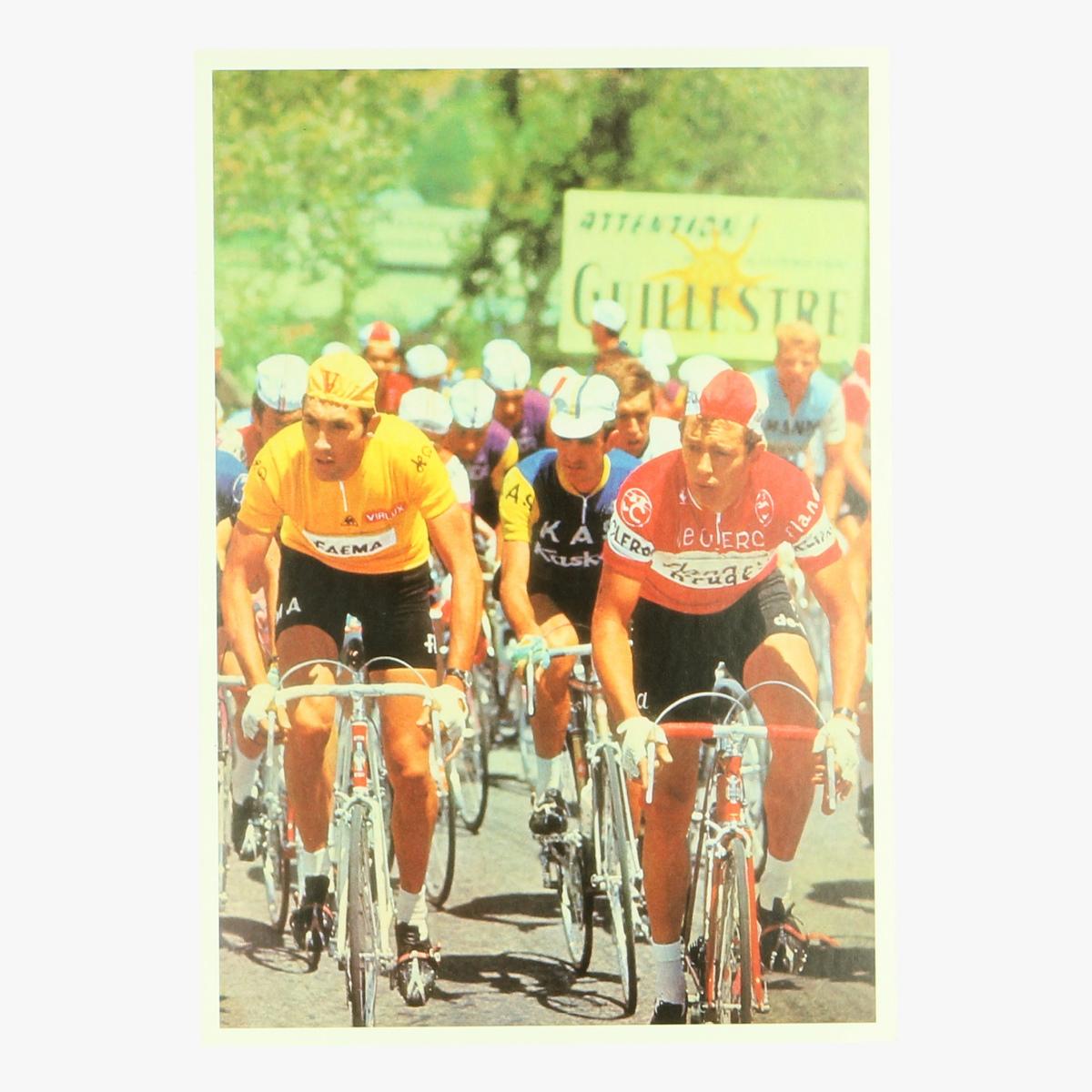 Afbeeldingen van postkaart Eddy Merckx in de gele trui repro